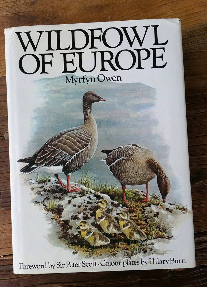wildfowl_europe_own.jpg